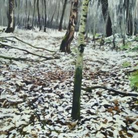Winter Trees 120cm x 120cm